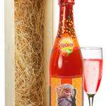 Champagne voor kids
