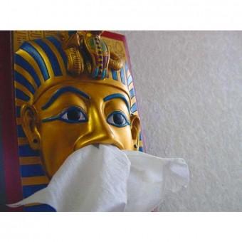 Zakdoekjes uit farao's neus