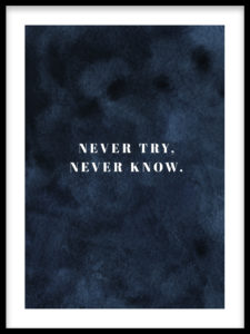 Never Try. Never Know poster